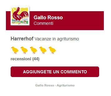 gallo-rosso-recensioni